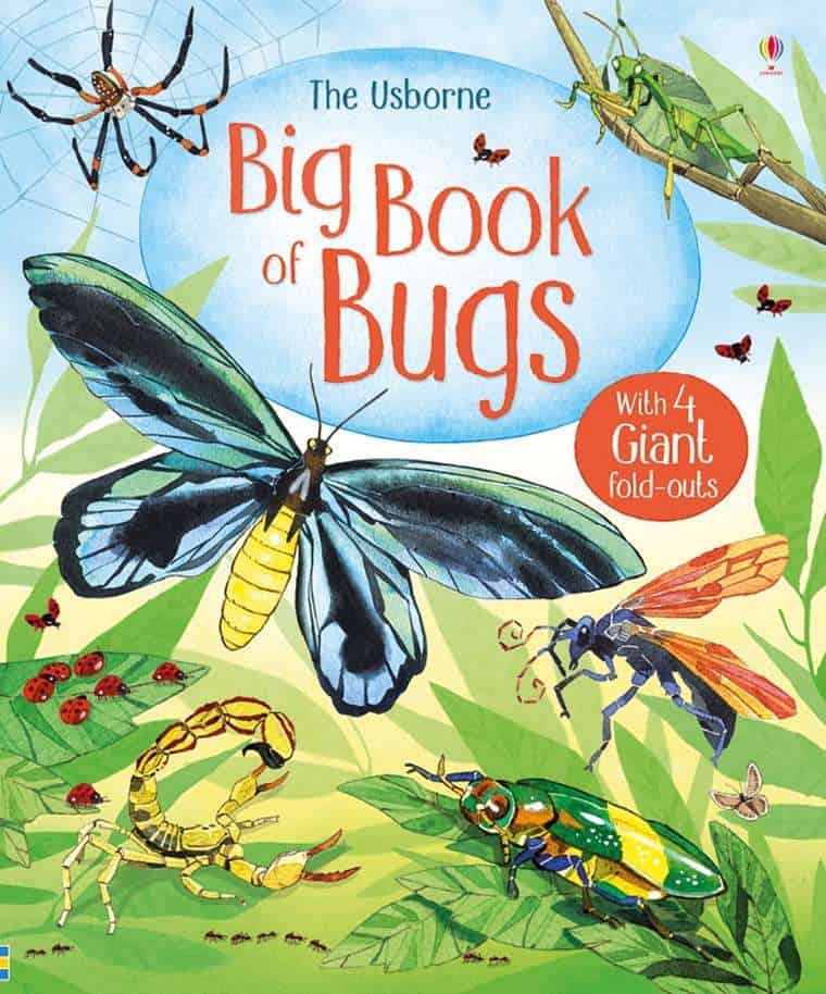 (The Usborne) Big Book of Big Bugs